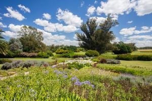 jardin santaisabel